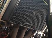 Nettoyage et peinture HT du radiateur + la grille en époxy