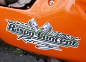 Déco sur sabot Team RCR (Raspo Concept Racing)