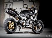 Hornet 600 street bike